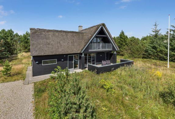 Fünfsterne Reetdachhaus in Houstrup mit Innen- und Aussenwhirlpool und Sauna