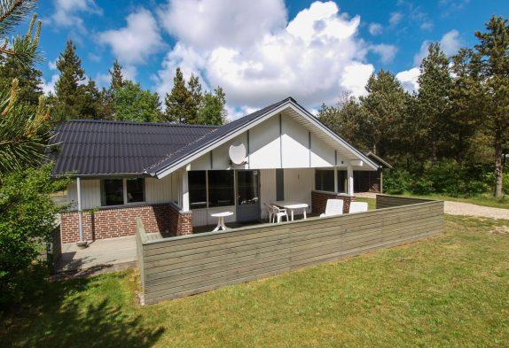 Helles Ferienhaus mitten in der Houstruper Waldlandschaft