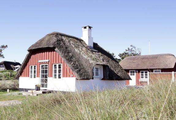 Gemütliches, gut eingerichtetes Reetdachhaus